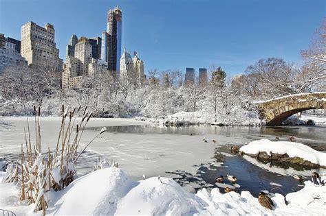 imagenes de nueva york invierno las mejores fotos del invierno en nueva york
