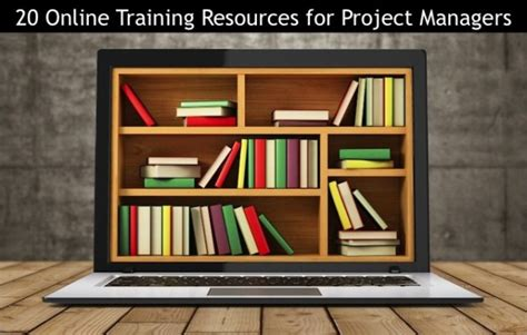 online tutorial project what is a program manager vs a project manager