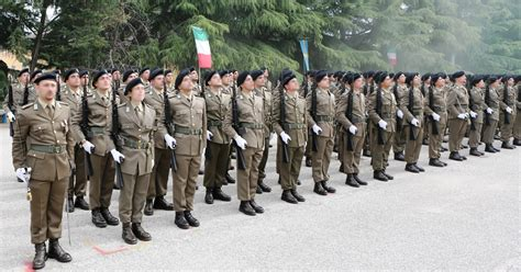 dati concorso sergenti esercito titoli e brevetti concorso vfp1 esercito concorsi esercito