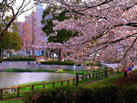 imagenes sobre japon clima de jap 243 n enciclopedia culturalia