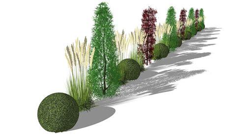 moderner garten sichtschutz pflanzen s 228 ulenb 228 ume und gr 228 serhecke