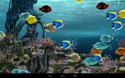 wallpaper bergerak pc windows 7 underwater world 3d apl android di google play