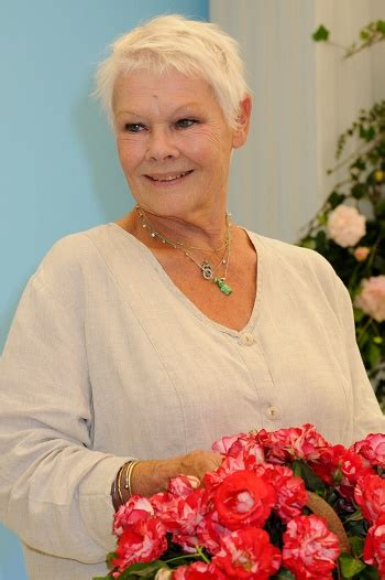 pictures of judi evans hair 2015 hairstyles judi dench short shaggy hairstyle