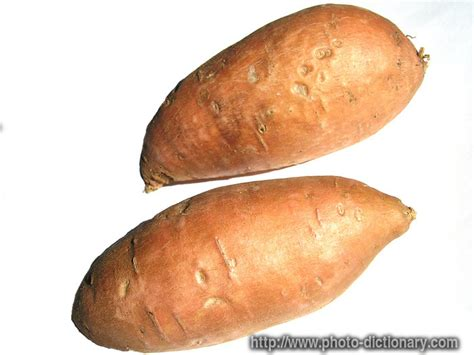 Potato Means by Sweet Potatoes Photo Picture Definition At Photo