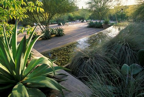ten eyck landscape architects desert botanic garden pool by ten eyck landscape architects teneyeckla pool lawn edge