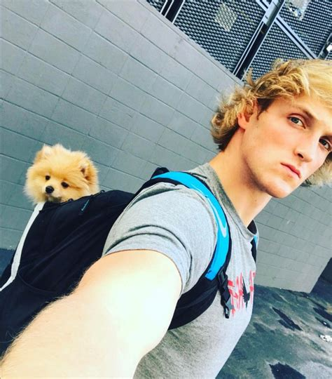 jake paul breed logan paul and his puppy kong logan paul logan paul logan and savage