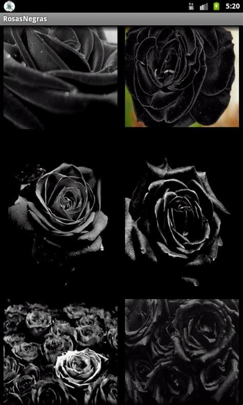 imagenes chidas negras rosas negras aplicaciones android en google play