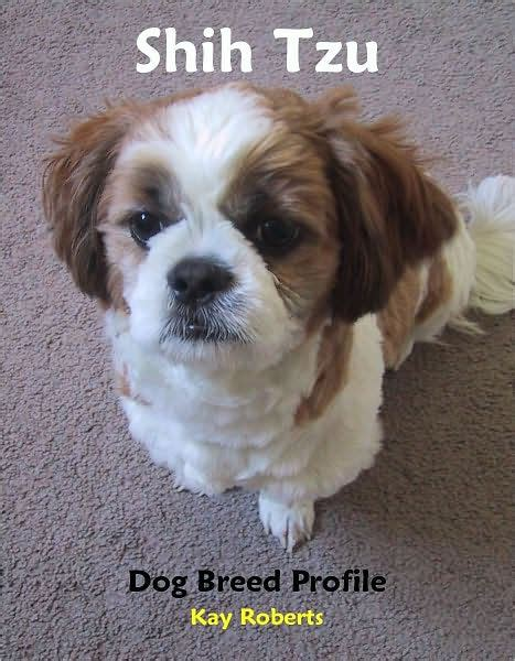shih tzu books shih tzu breed profile by nook book ebook barnes noble 174