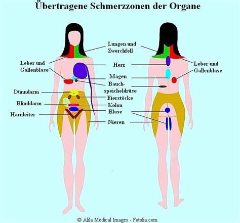 schmerzen in der linken brust beim liegen referred chart eps8 symptome und behandlung