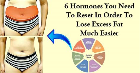 reset these 6 hormones to eliminate belly