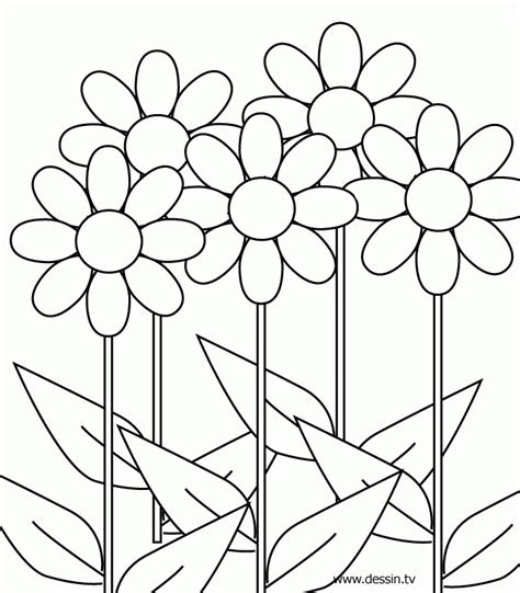 Coloring Pages For 8 And Up