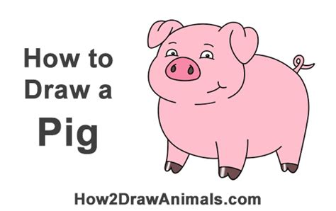 how to a pig pig www pixshark images galleries with a bite