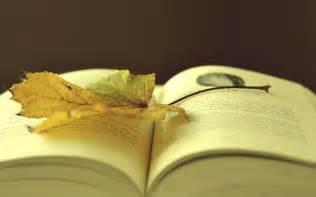 book wallpaper download books wallpaper 2560x1600 wallpoper 307721