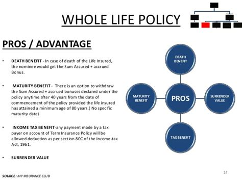 whole life policy types of life insurance policies in india