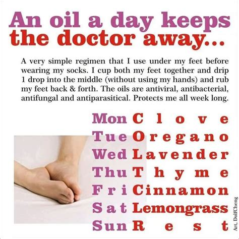 Lipgloss Each Day Keeps The Doctor Away by 1000 Ideas About Clove Uses On Clove