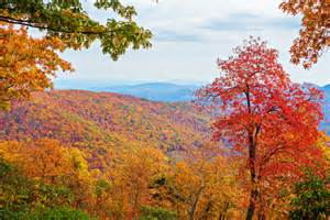 carolina fall colors list item drive the blue ridge parkway in