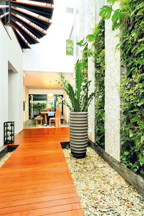 vertical gardening in singapore green options for a