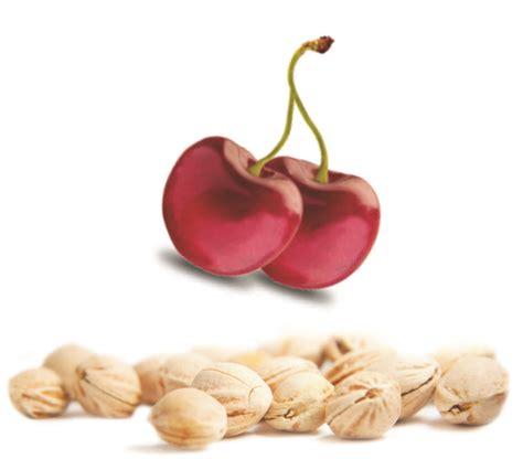 cuscini noccioli ciliegia cuscino cervicale noccioli ciliegia