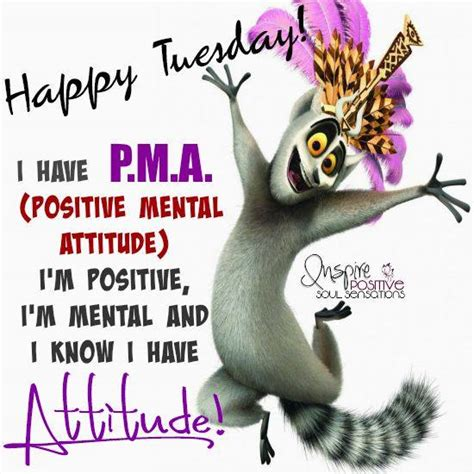 Tuesday Memes Funny - tuesdayy days of the week pinterest positive mental