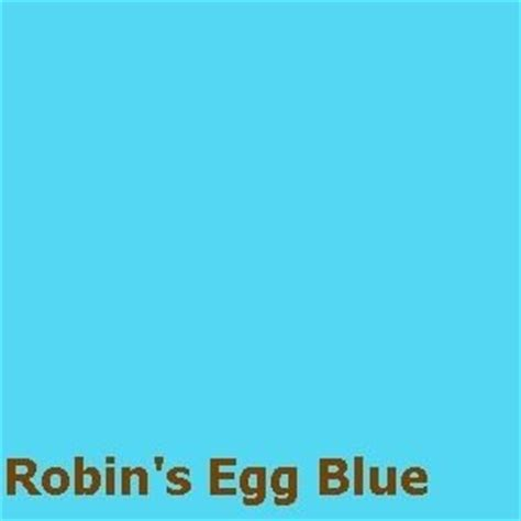 robin egg blue robin s egg blue powder fiber reactive dye for 1lb fiber fabric fur