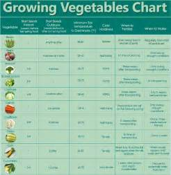 planting times for garden vegetables guidelines for growing vegetables chart