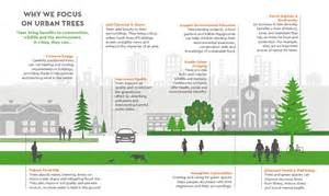 Benefits of urban trees benefits of trees trees for cities