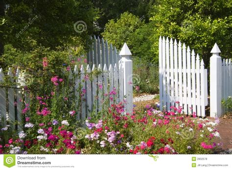 Garden Gate Flowers by Garden Gate Stock Photo Image Of Grow Colorful Pink