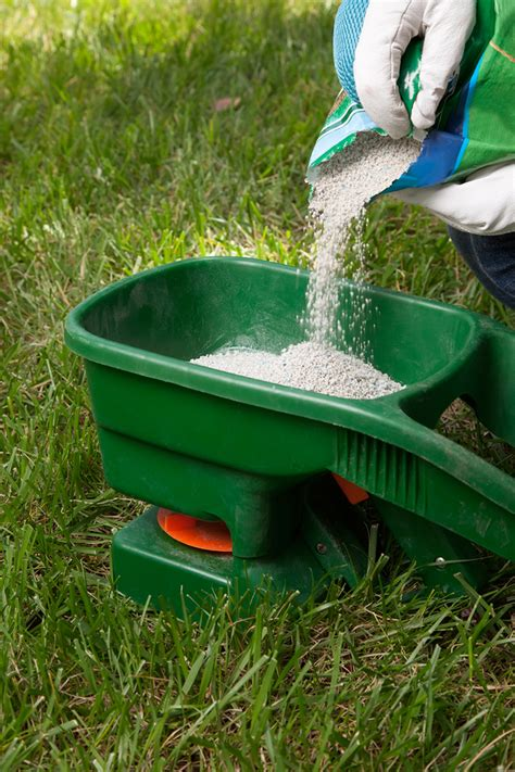 10 ways to improve your lawn
