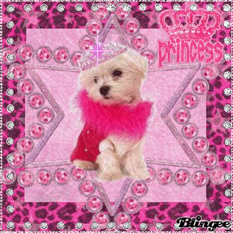 princess puppy princess puppy picture 128729127 blingee