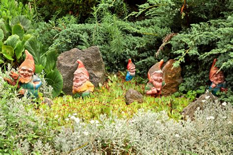 there s a gnome in my home phonetically based poems to engage struggling readers and language learners books how the tradition of putting a gnome in your garden started
