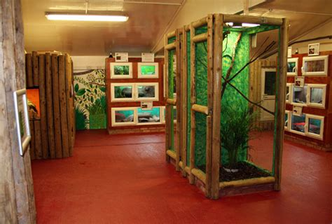 Reptile Rooms by New Reptile House Scales Up South Staffordshire College