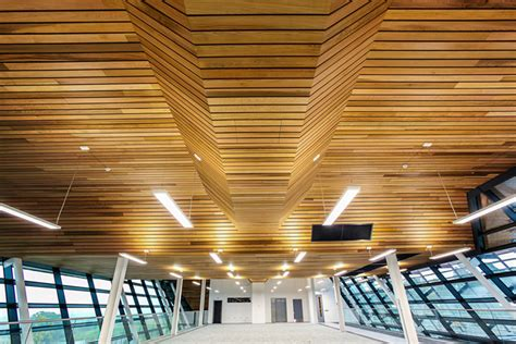 Douglas Ceilings by Leading Science Park Development Features Douglas