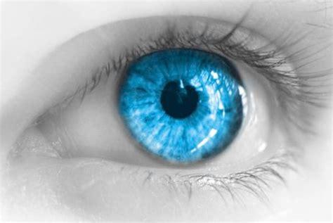 eye lens eye lens gallery