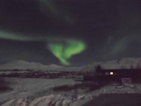 northern lights in iceland foto di gray line iceland