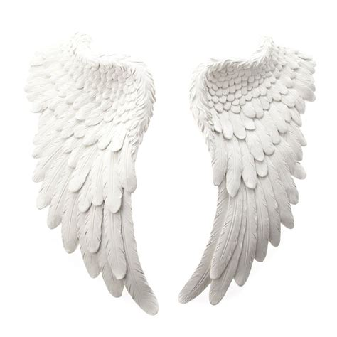 on angel wings images for gt angel wings side view angel wings angel wings and angel
