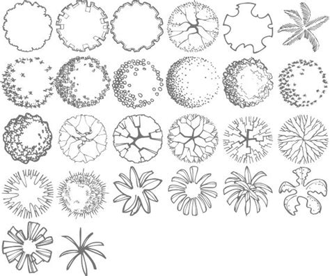 tree symbol font 25 best ideas about landscape architecture drawing on