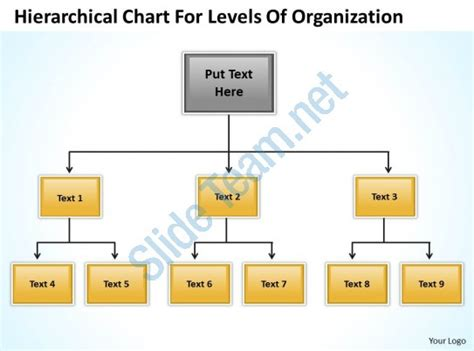 levels of organization diagram hierarchy flowchart template create a flowchart