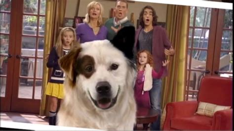 disney channel dog with a blog last episode youtube a visual recap of the greatest show of all time disney s