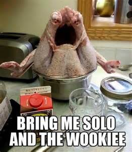 Thanksgiving Turkey Meme - thanksgiving memes and fun pictures thechive