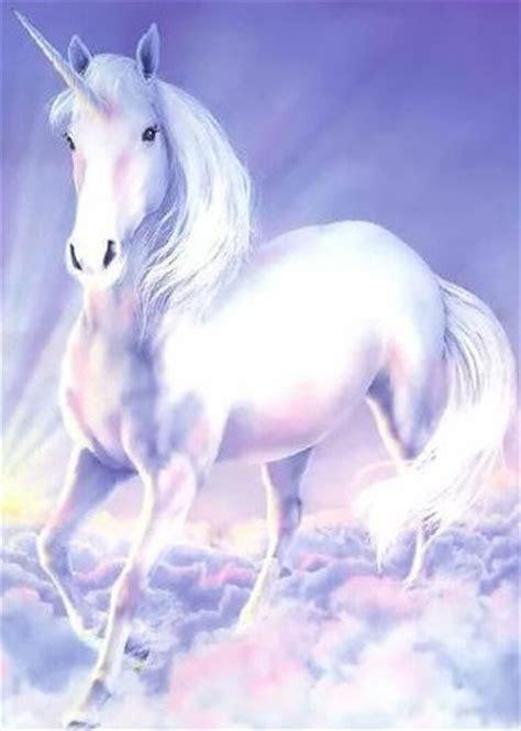 imagenes de animales unicornios seres m 225 gico el blog de tarot el angel 806 51 70 73