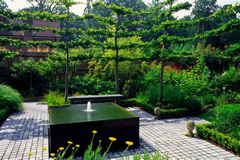 contemporary backyard landscaping ideas contemporary landscaping ideas from andy sturgeon small