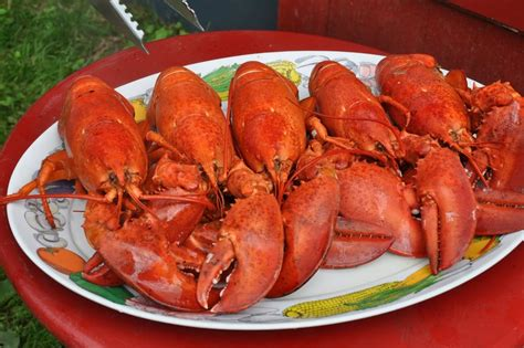 unlimited lobsters yelp