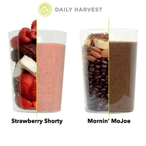 Best Daily Harvest Smmothie For Detox by Healthy Smoothies For Weight Loss How To Make Your Own Or