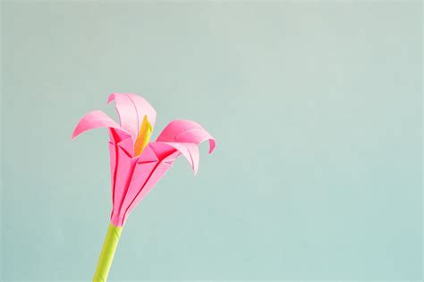 Small Flower Origami - free photo origami flower isolated free image on