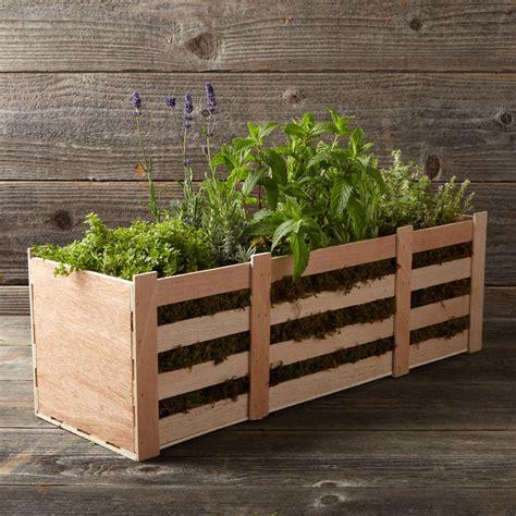 titanic gravy boat uk herbal tea crate the green head