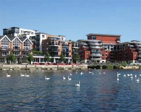 thames river cruise from kingston photo of the week the river at kingston upon thames