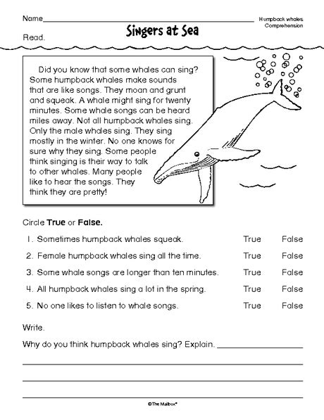libro comprehension workbook year 4 free printable reading comprehension worksheets health symptoms and cure com