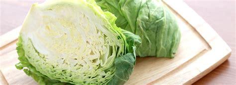 come si cucina la verza come cucinare la verza misya info