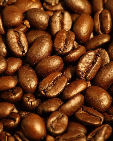 Cappucino Coffee Bean file roasted espresso blend coffee beans 2 jpg
