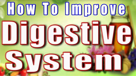 how to improve digestive system ii प चन त त र क स वस थ